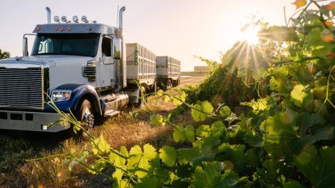 semi truck in field